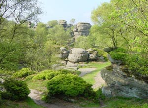 Brimham Rocks near The Firs